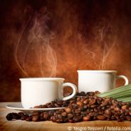 Kaffee-Anbaufläche ökologisch bewirtschaften